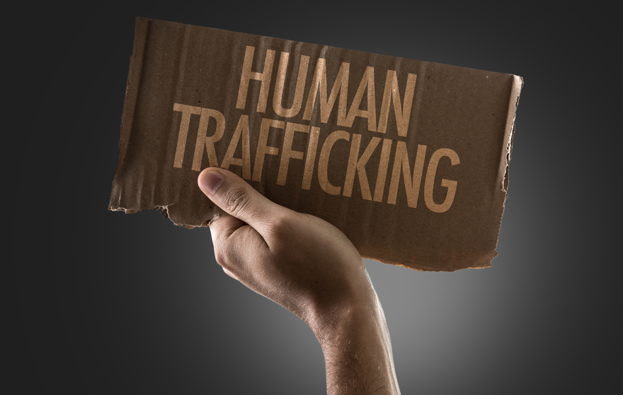 Human Trafficking board